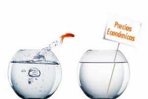 Posicionamiento y promoción económica
